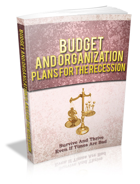 Budget And Organization Plans For The Recession – eBook